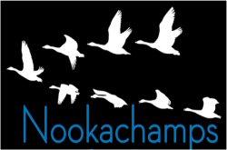 nookachamps